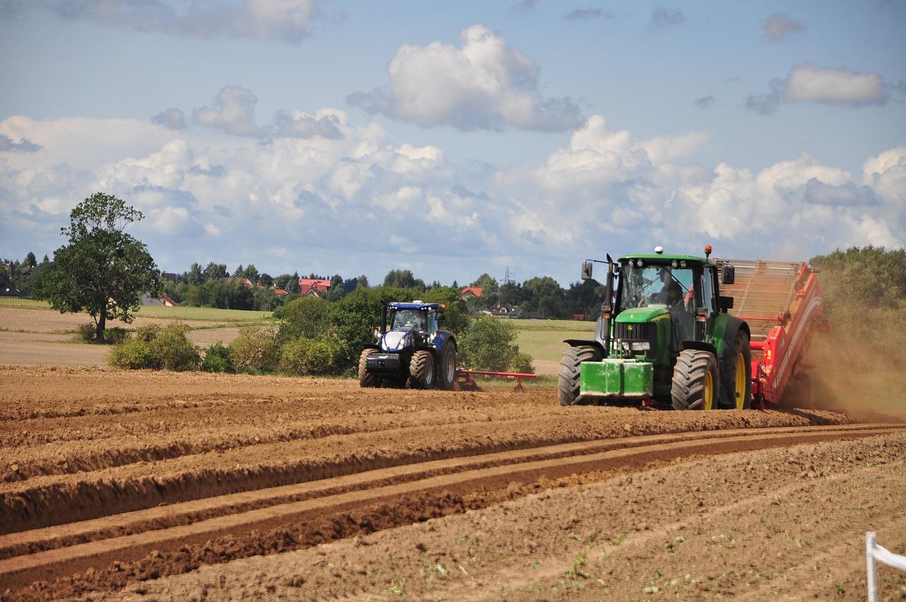 L'agricoltura italiana è la prima in Europa - Ulisse online